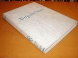 berge-im-schnee--das-winterbuch