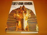toetankamon-god-in-gouden-sarcofaag