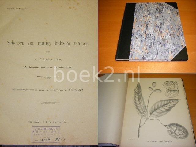 GRESHOFF, M. - Schetsen van nuttige Indische planten. Eerste Aflevering.