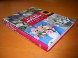 the-ultimate-flower-arranging-book