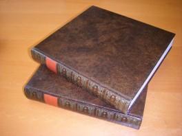 historie--des-ouden-en-nieuwen-testaments-in-meer-dan-driehonderdvyftig-printverbeeldingen-in-koper-gesneeden-eerste-deel-en-twe