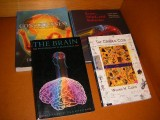 brain-mind-and-behavior--the-cerebral-code-thinking-a-thought-in-the-mosaics-of-the-mind--the-brain--consciousness-an-introducti
