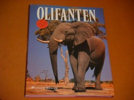 olifanten-fascinerend-dierenrijk