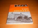 the-brontes-ward-lock-educational-lives-series