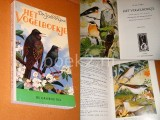 Het Vogelboekje. De Groene Rei.