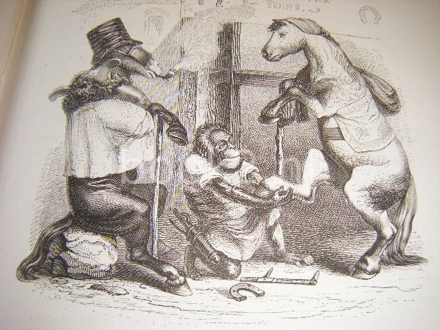 GRANDVILLE, J.J.; P.J.STAHL, ET AL - Vie privee et publique des animaux, vignettes par Grandville publiee Sous la Direction de P.J.Stahl. Edition complete, revue et augmentee