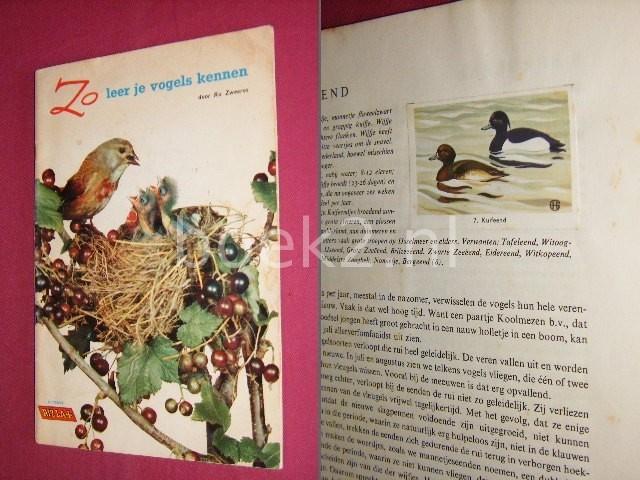 KO ZWEERES - Zo leer je vogels kennen, Eerste deel