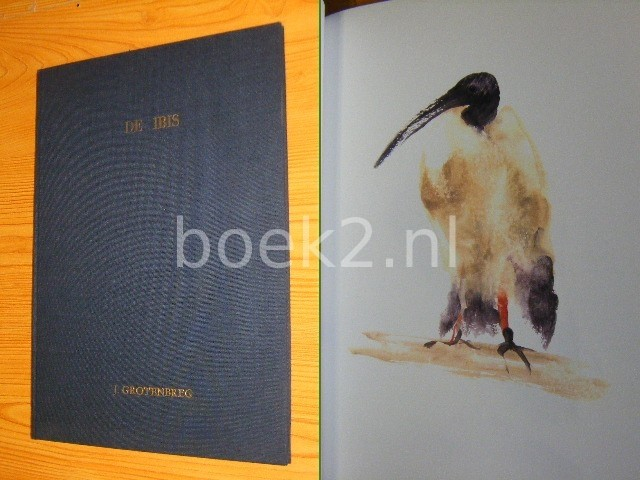 De Ibis, Aboe-Hannes [Gesig...