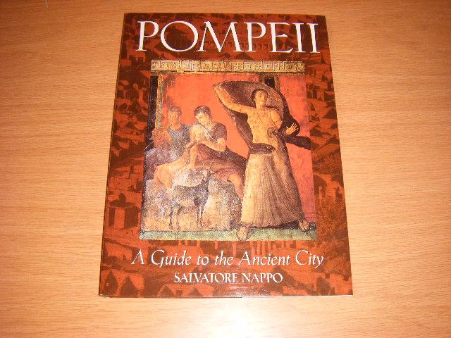 verloren steden vesuvius